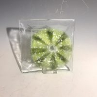 5X5 Nautucal Glass Dish